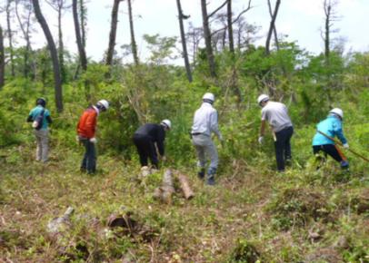 被害を受けた海岸林の整備(地ごしらえ)。首都圏や栃木などの企業、一般のボランティアの皆さんの協力を得て進めています。「安全確保に努めながら『参加して良かった』『楽しかった』『もう一度来てみたい!』と思ってもらえるような内容を心がけています」と松崎さん(写真提供:NPO法人いわきの森に親しむ会)