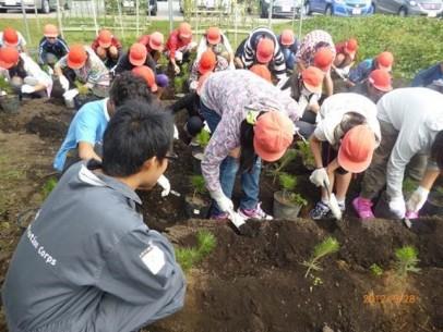 小学生や高校生など、現場にいけなくてもできる協力として「苗を育てる」ボランティアもあります(写真提供:NPO法人いわきの森に親しむ会)