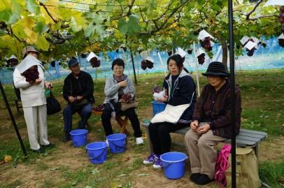 田村市仮設移動サロン!実りの秋満喫してきました♪